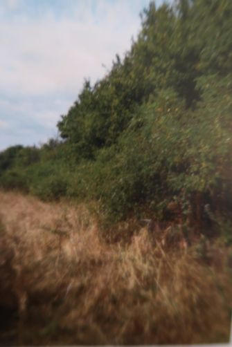 Vente terrain BRIARE - photo